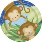 Baby Boy Monkey