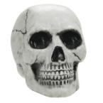 Koponyák és csontvázak