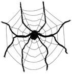 Pókok és pókhálók