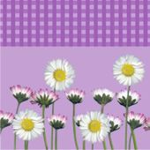 Szalvéta Daisy lila
